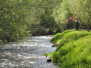 bear river insurance agent in murray utah